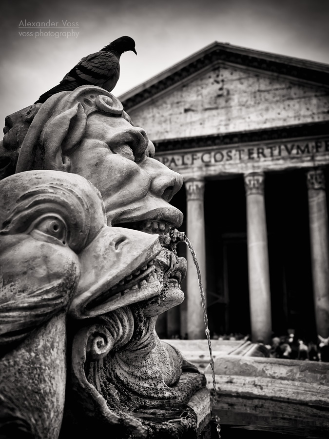 Black and White Photography: Rome – Fontana del Pantheon